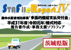 STAFile Report Ⅳ